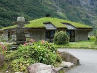 Озеленение крыши и кровли — пошаговая инструкция с фото идеями от дизайнеров