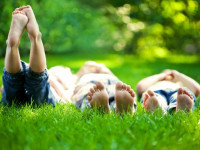 Красивый газон: фото идеи безупречного оформления газона своими руками