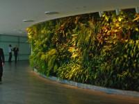 Вертикальное озеленение — фото лучших идей красивого оформления на дачном участке