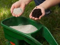 Удобрение газона — пошаговая инструкция для начинающих садоводов с фото и описанием