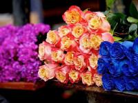 Как выбрать букет на 8 марта: значение цветов и их количества