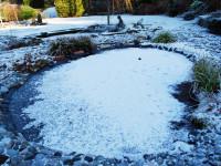 Готовим декоративный пруд к зимовке: советы и рекомендации