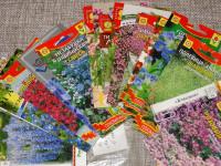 Однолетние и многолетние цветы которые сажают осенью