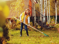 Самые важные работы в саду в сентябре