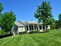 Болезни газона — полезные советы как сохранить газон. Фото примеры борьбы с вредителями газона
