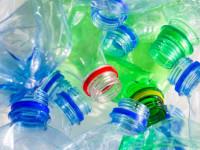 Пальма из бутылок — как сделать стильное украшение из пластиковой тары (67 фото + видео)