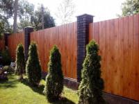 Забор из профлиста: 53 фото самых лучших идей для дома и дачи
