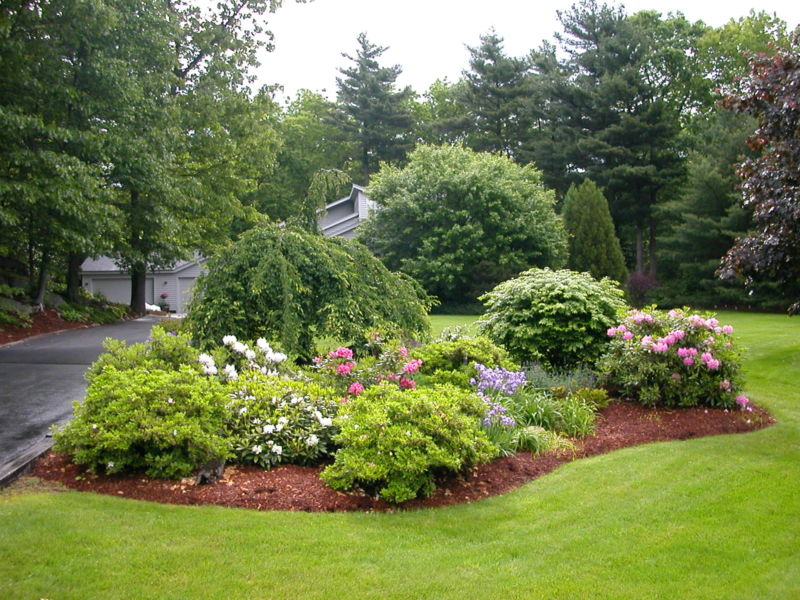 residential-landscape-design-with-island