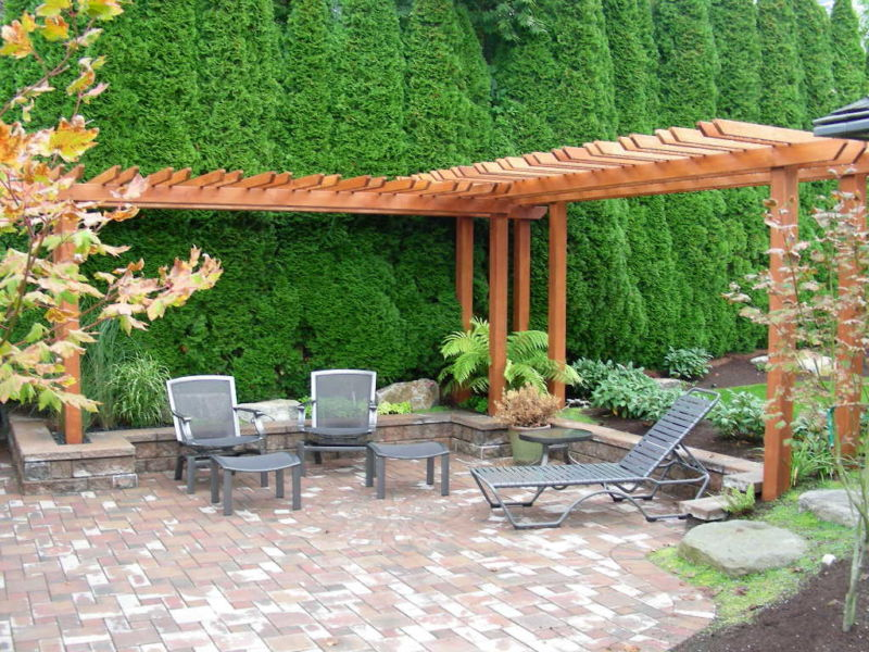 amazing-peaceful-backyard-design-ideas-showcasing-l-shape-wooden-arbor-with-high-pine-trees-and-garden-furniture-in-grey-accent-on-paving-areas-at-beautiful-landscapes-fo