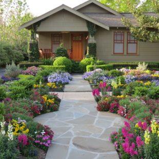 Неприхотливые цветы для клумбы — 50 фото красивых цветов для клумбы, которые цветут все лето
