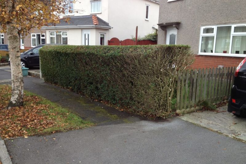 hedge-trimming-colne-3-1170x780