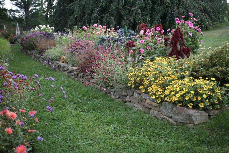 white-flower-farm-trial-garden-border-color-gardenista