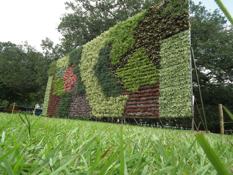 1280px-vertical_garden_from_lalbagh_flower_show_aug_2013_8790