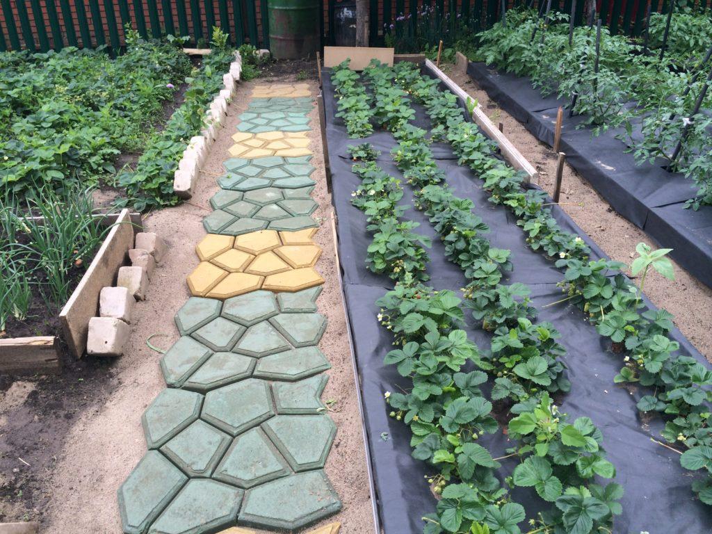 Технология садовой дорожки своими руками фото 374