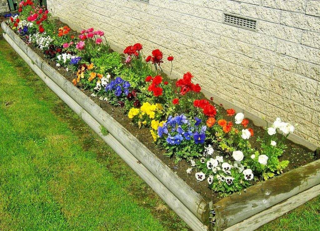 Фото цветников и клумбы своими руками на даче фото