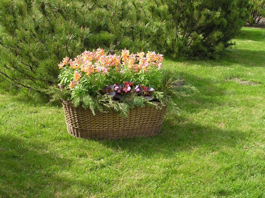 Корзина плетеная для сада