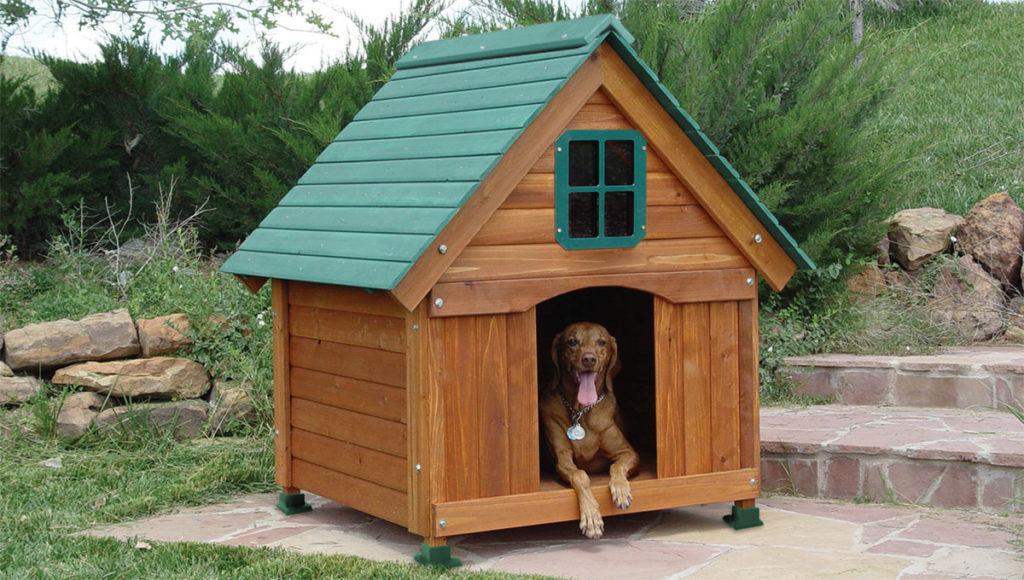 doghouse-lr-11