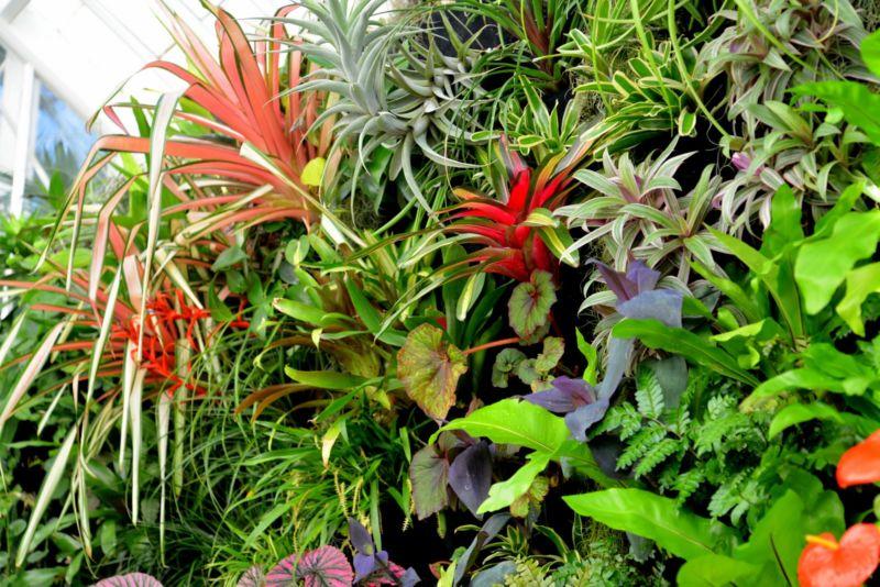 florafelt_vertical_garden_planters_conservatory-of-flowers_plantsonwalls-com-001