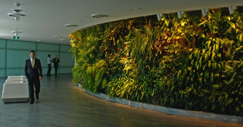 office-interior-vertical-garden