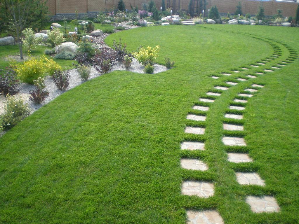 Фото газон своими руками на даче фото 20
