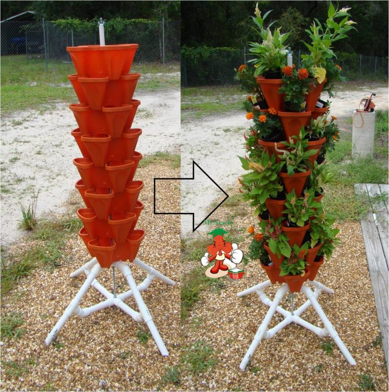 vertical-vegetable-garden-pictures