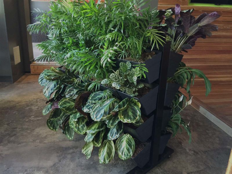 do-it-yourself-vertical-garden