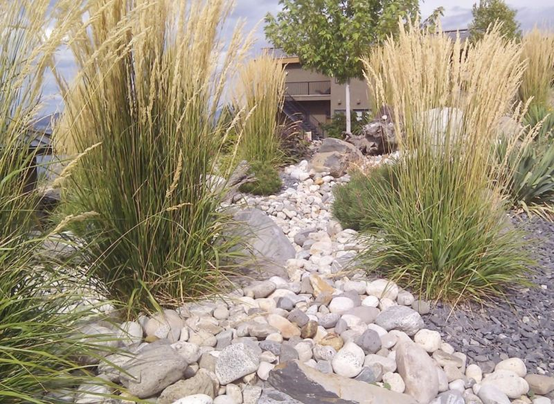 dry-creek-landscape-2-colorado-xeriscape-landscaping-ideas-1234-x-900