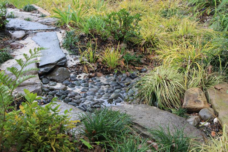 dry-creek-pool