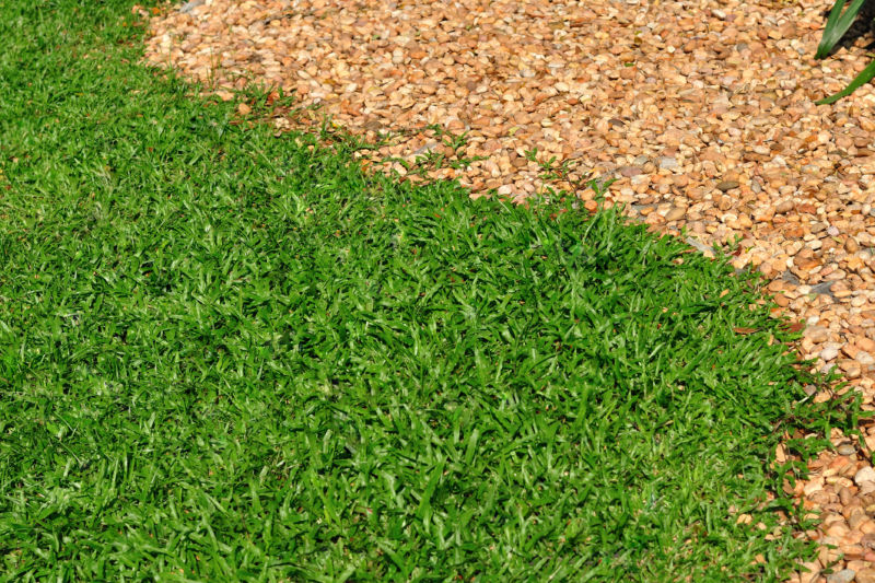 grass-and-woodchip