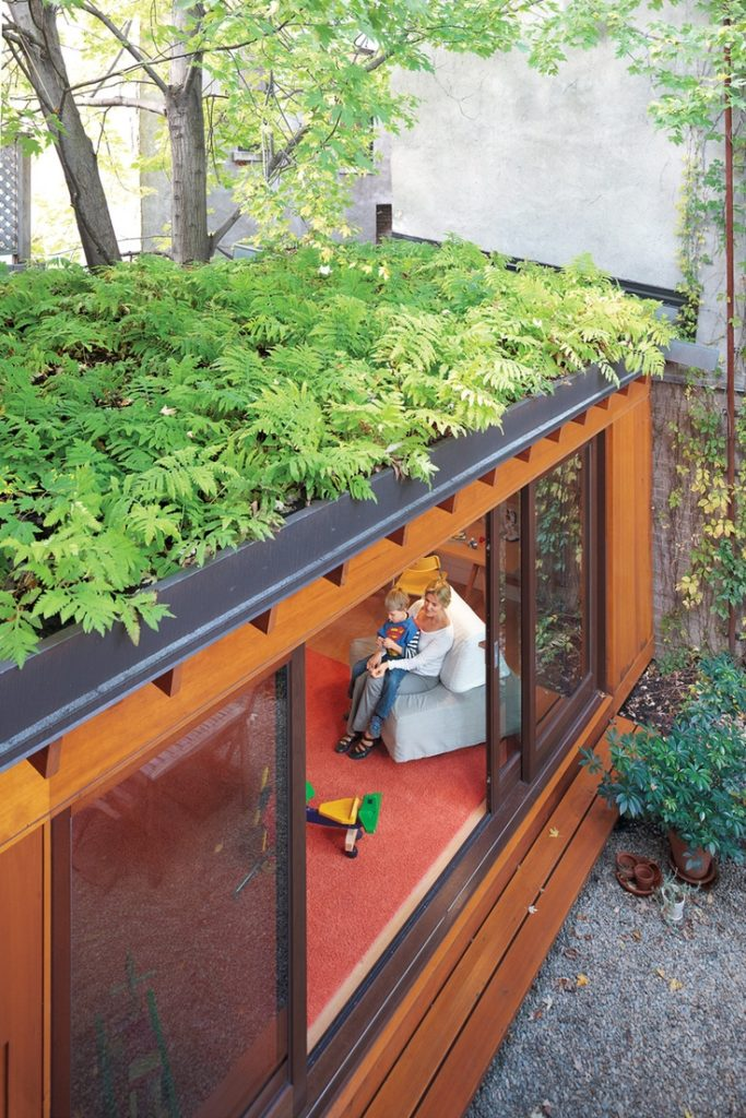 green-roof-05