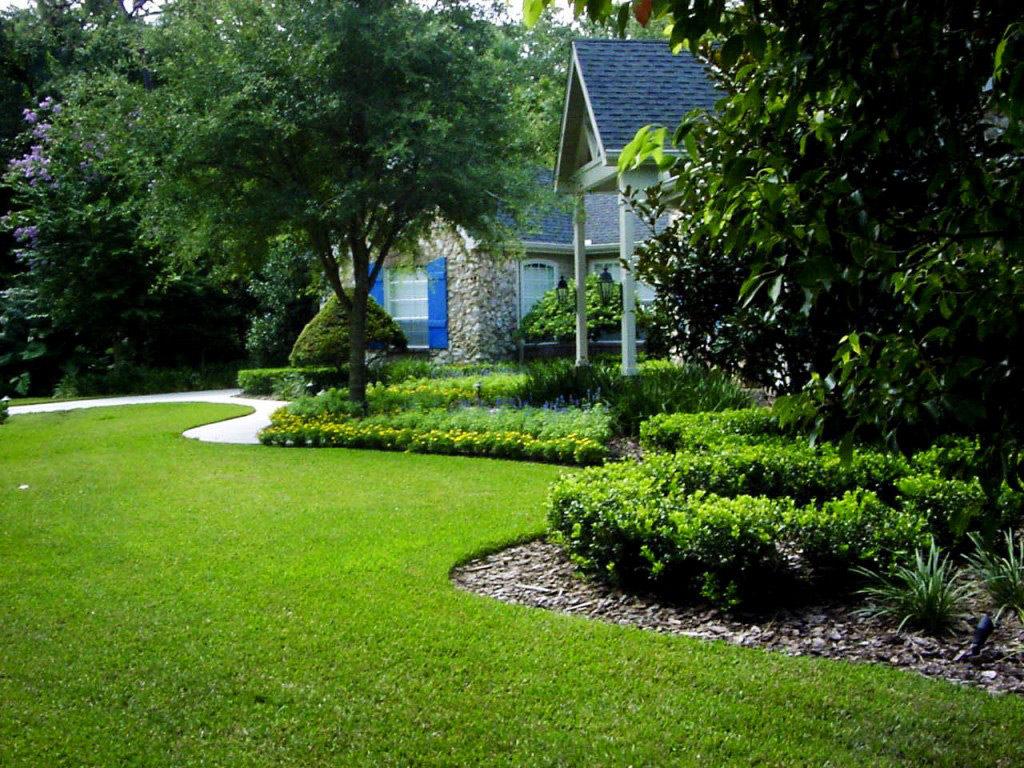Лужайка перед домом своими руками 34