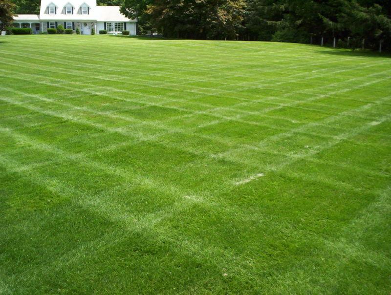 lawn-big