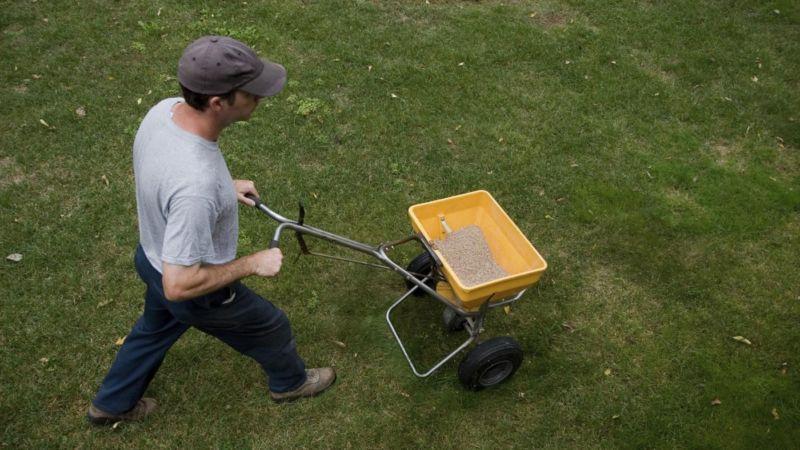 lawn-fertilizer-chart_55039dfd9f39a131_j425dewgteg07wfkaql_zg
