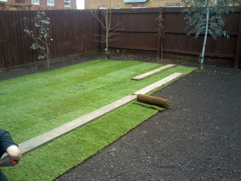 lawn2inprogress