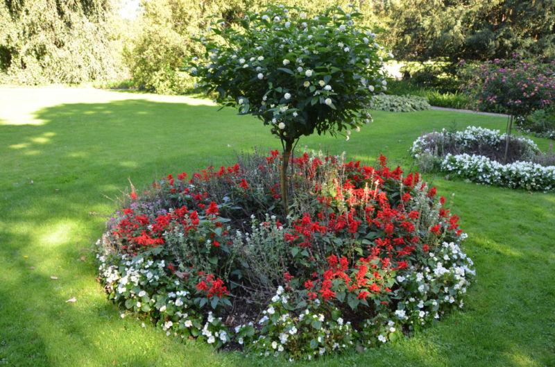 ring-garden