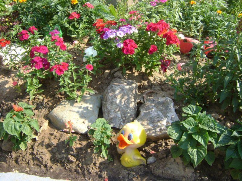 rock-garden_1