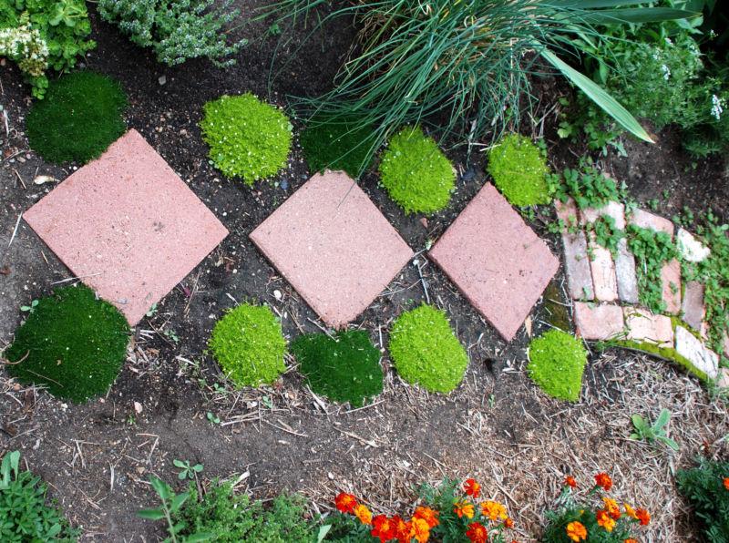 Плитка на садовые дорожки своими руками 63