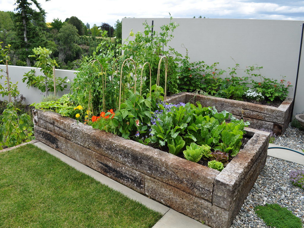 simple-edible-gardening-ideas