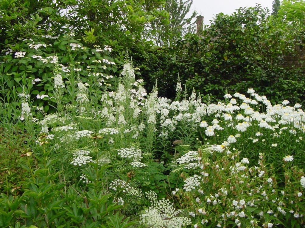 white-garden-3
