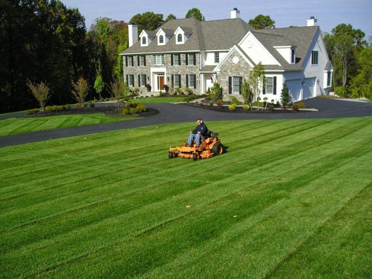 Как выбрать газонокосилку (11)
