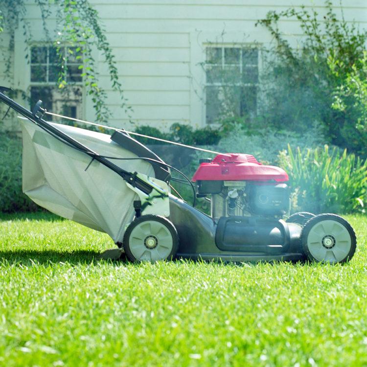 Как выбрать газонокосилку (45)