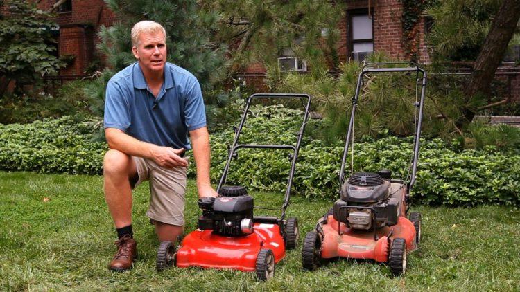 Как выбрать газонокосилку (53)