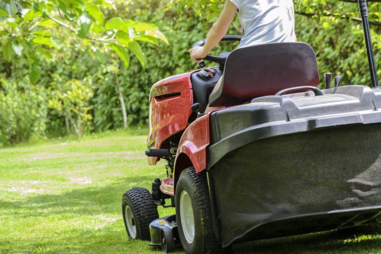 Как выбрать газонокосилку (57)