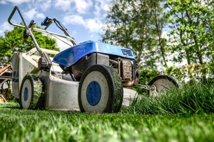 Как выбрать газонокосилку (9)