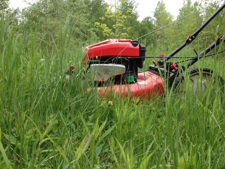 Как выбрать газонокосилку (97)