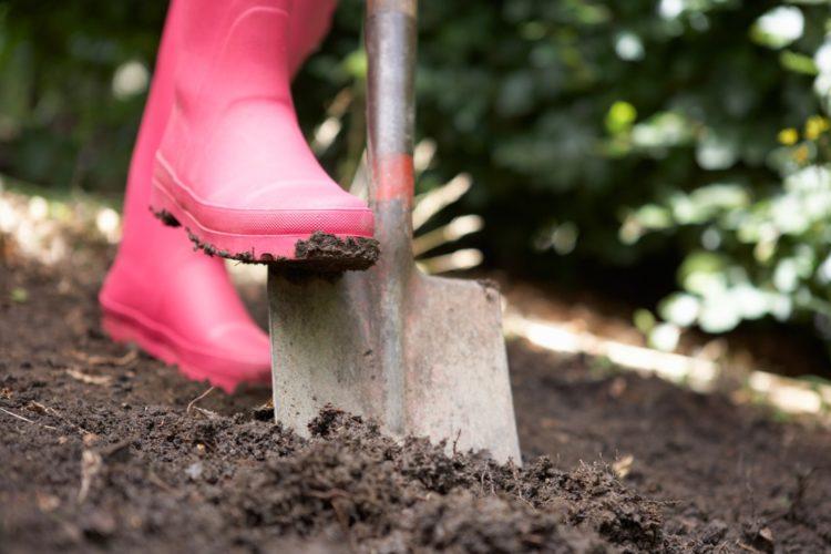 Как выбрать лопату — 55 фото самых полезных разновидностей для хозяйства!