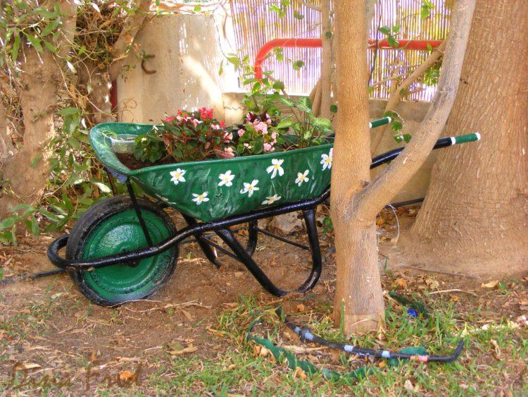 Тачка садовая 9 (3)