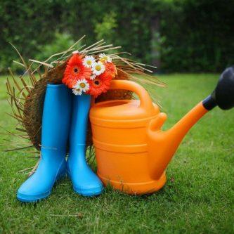 Октябрьские работы в саду и в цветнике: что важно сделать завершая дачный сезон